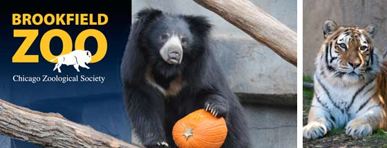 Brookfield zoo coupons