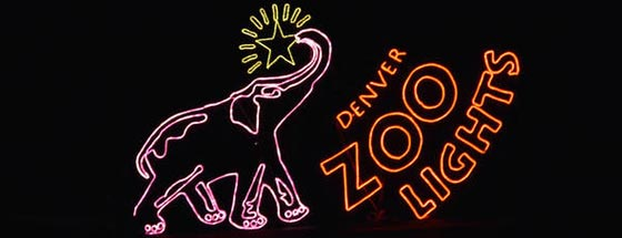 Denver Zoo Lights 2019 Tickets Hours Dates Coupons