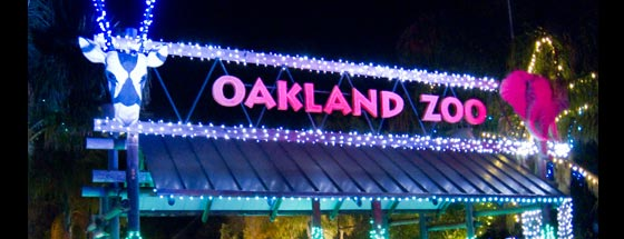 Oakland Zoo Lights 2019 Coupons Ticket Prices Dates