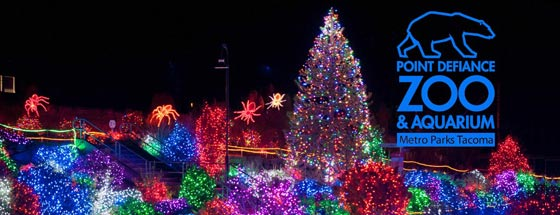 Pt Defiance Zoo Lights 2019 Coupons Hours Lights