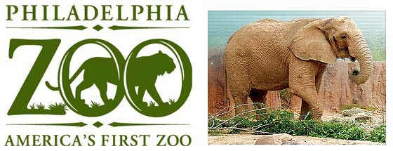 Philadelphia zoo discount coupons